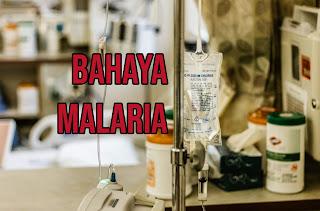 nyamuk, nyamuk dbd, nyamuk malaria, nyamuk aedes, nyamuk anopheles, anopheles, anopheles sp, malaria, malaria adalah, malaria pdf, malaria tropika, malaria tertiana