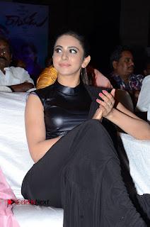 Actress Rakul Preet Singh Stills in Black Saree at Rayudu Movie Audio Launch  0054.JPG