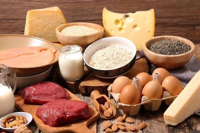 makanan protein tinggi