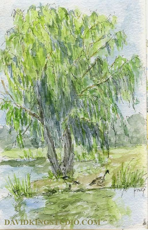 art sketch life pen watercolor pond water tree park