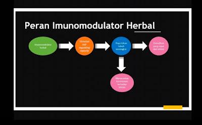 Peran Imunomodulator