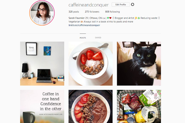 Follow me on Instagram! I met my 200 follower goal for the 101 Things in 1001 Days challenge