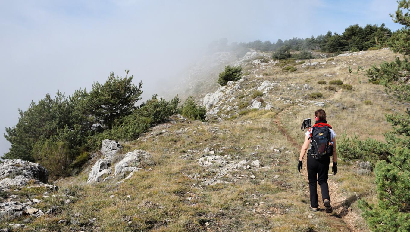 Ridge above Caussols
