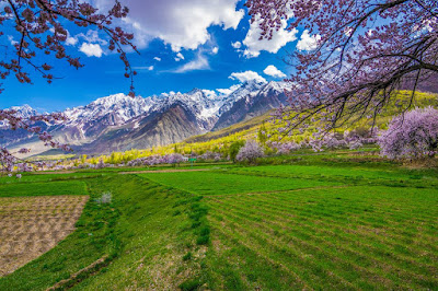 Unexplored Beauty In Gilgit Baltistan, Chunda Valley