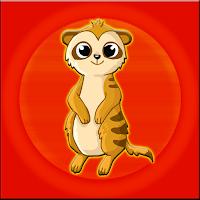 Meerkat Escape