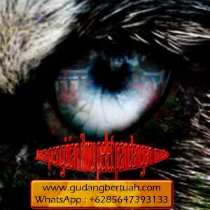 Jasa Pengisian Ilmu Pelet Pandangan Mata