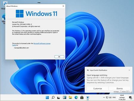 Windows 11 Dev OS x64 Build