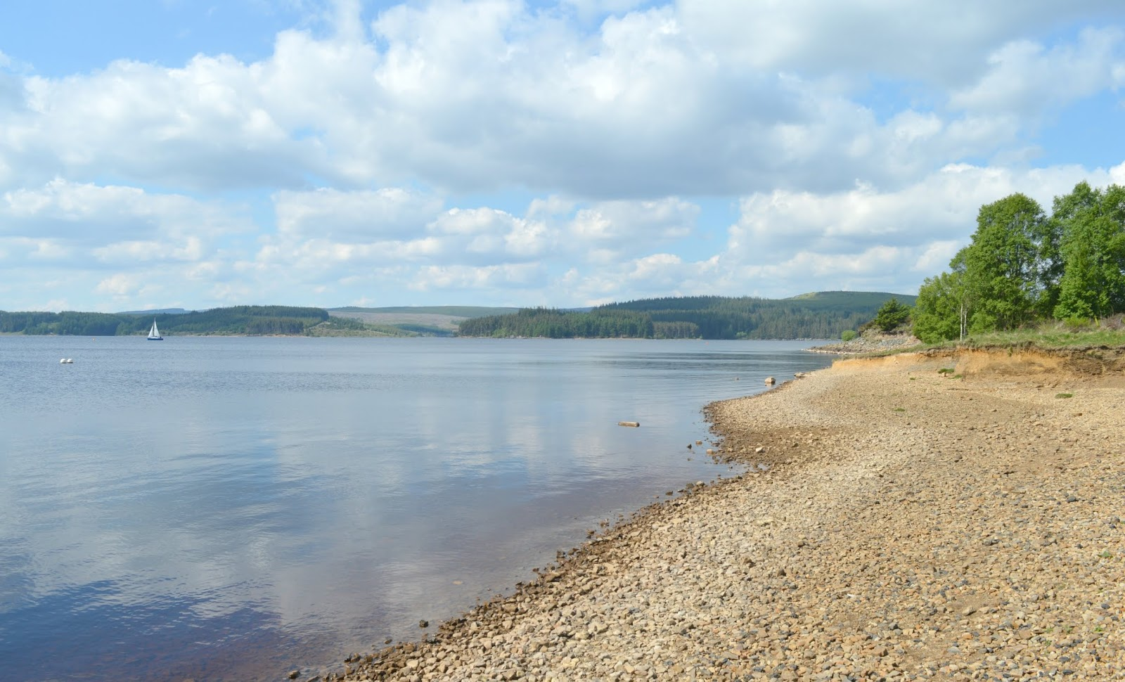 First Time Visitor Guide to Kielder - Tower Knowe
