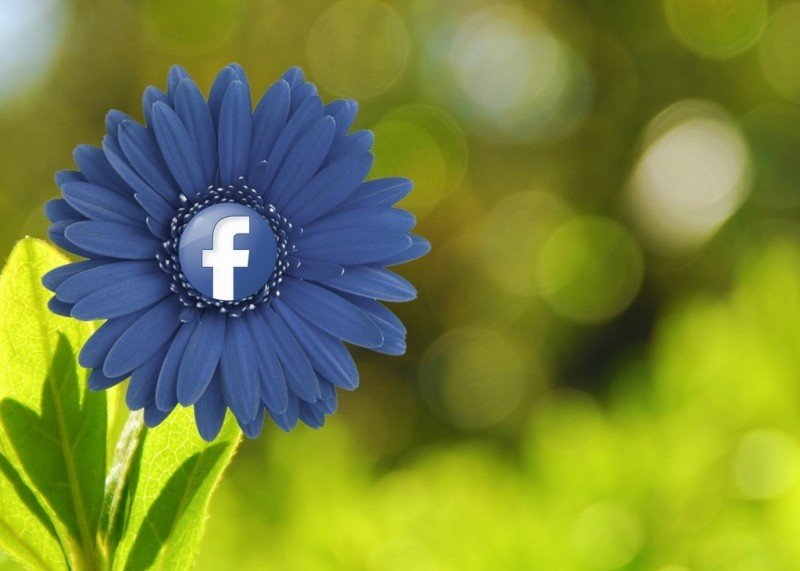 How to change your Facebook profile picture without anyone knowing