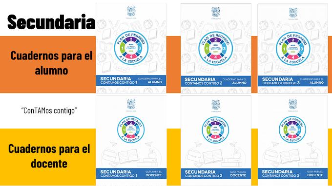 Cuadernos de actividades para fortalecer los aprendizajes esperados fundamentales en secundaria