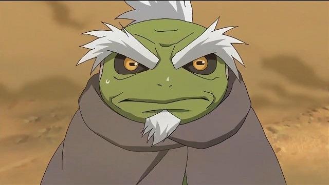 katak tua berumur 800 tahun
