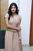 Hebah Patel in Brown Kurti and Plazzo Stuunning Pics at Santosham awards 2017 curtain raiser press meet 02.08.2017 012.JPG