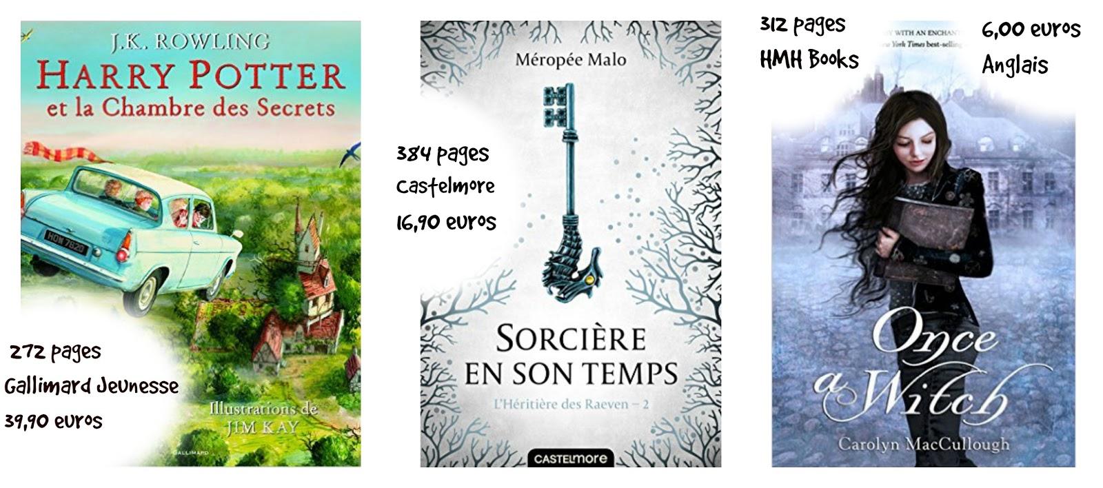 Le blog de the book girl mes lectures d 39 octobre - Fiche de lecture harry potter et la chambre des secrets ...