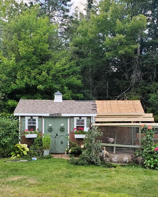 Chicken coop roof under construction