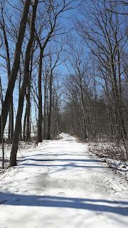 Sentier parc d'Oka, hiver, glace, neige