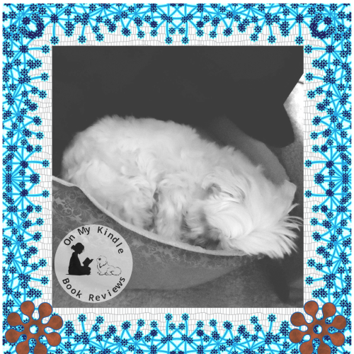 Second Marvelous Monday, April 1st image of Lexi sleeping in her new bed.