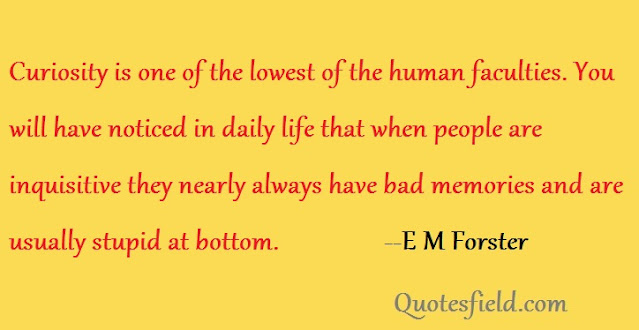quotes about curiosity being bad