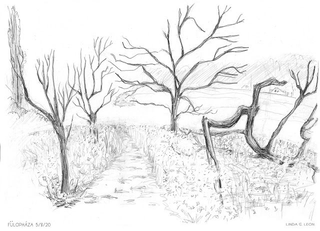 Nature reserve, Fülopháza - Hongaria sketched on location by Linda S. Leon