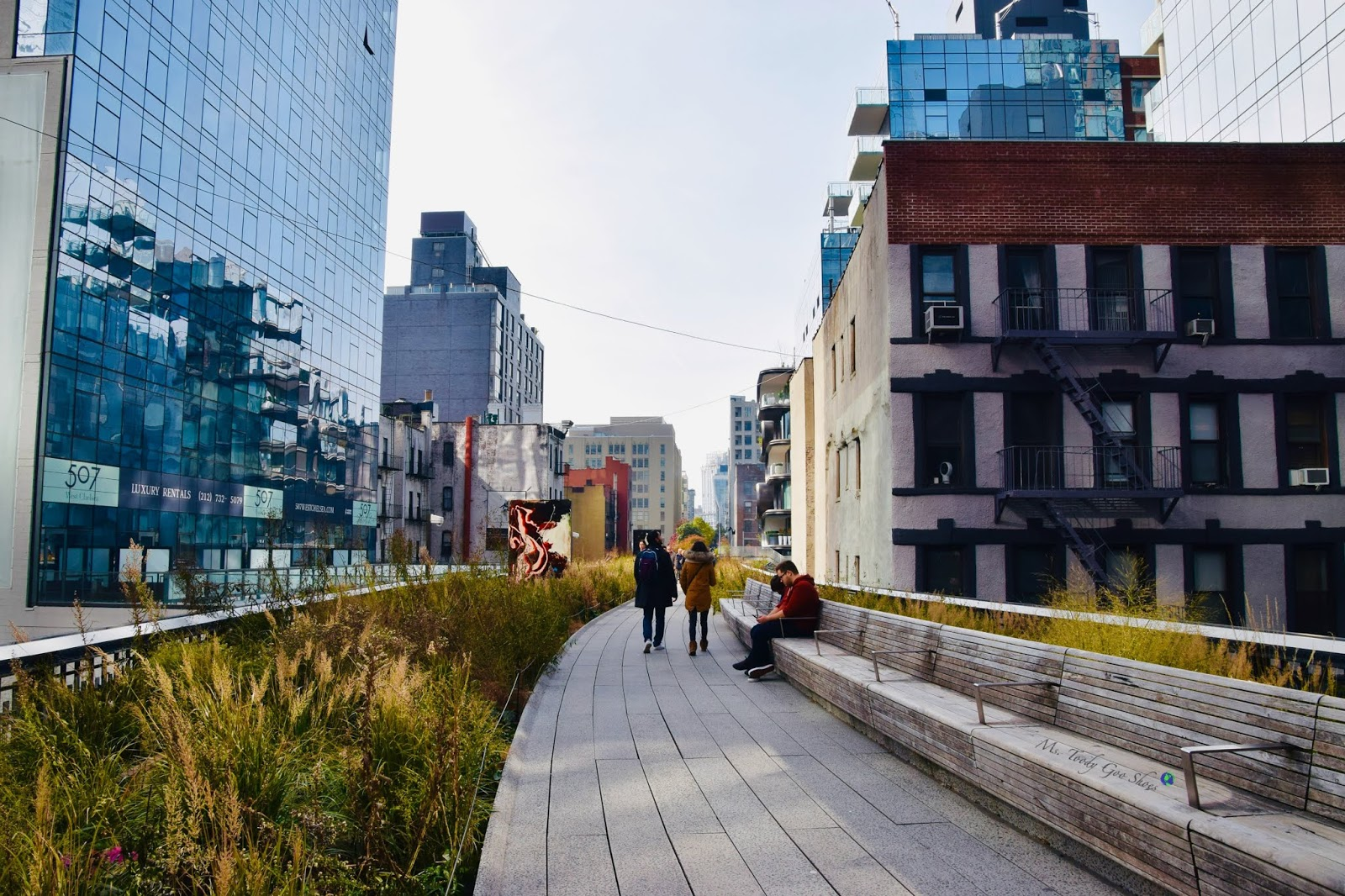 The High Line , NYC |Ms. Toody Goo Shoes Photo Diary