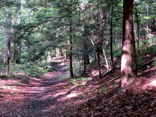 Letchworth Trail