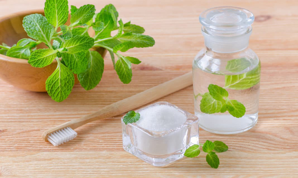 Knowing Some Used and Popular Benefits of Mint