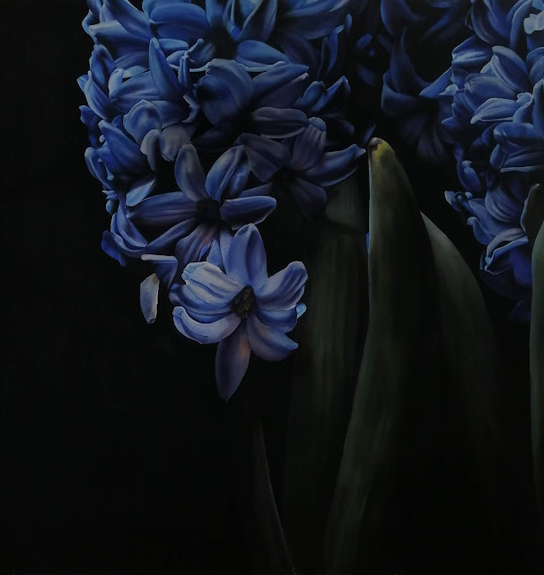Botanical art Hyacinth by J R Shepherd