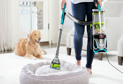 Which Type of Pet Hair Vacuum Is for You?