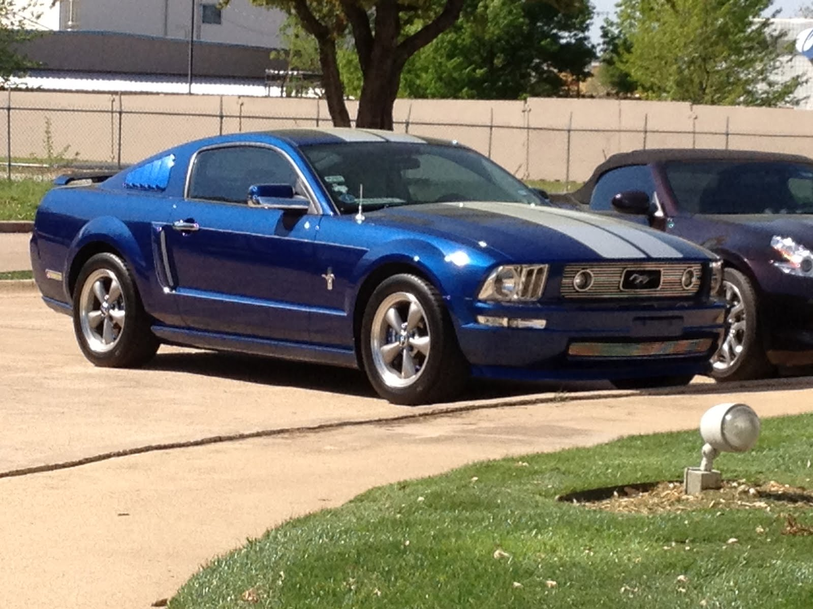 Rare Pony 2006 Mustang Stampede Edition 25 March 2012