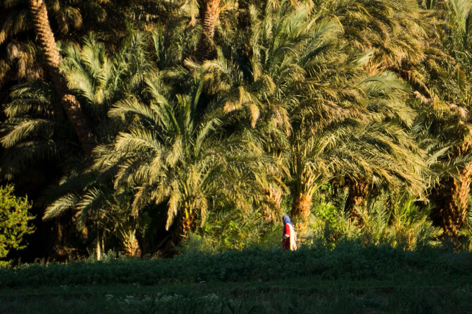 Cautand femeie marocana Belgia 999 fete la ora balti
