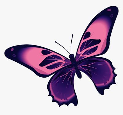 gambar kupu kupu cantik banget