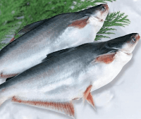 Basa fish in Malayalam
