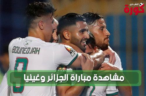 مشاهدة مباراة الجزائر وغينيا بث حي مباشر