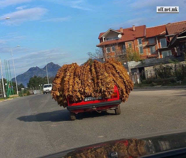 Pimp my Ride mit Dreadlocks aus Prilep