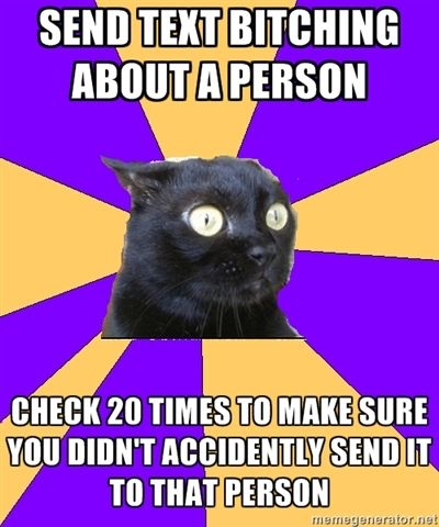 anxiety cat meme text message