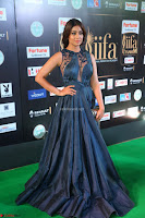 Shriya Saran in Beautiful Transparent Dark Gown IIFA Utsavam Awards 2017 022.JPG