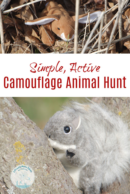 Set up a Animal Camouflage Hunt for Quick, Hands-on Learning