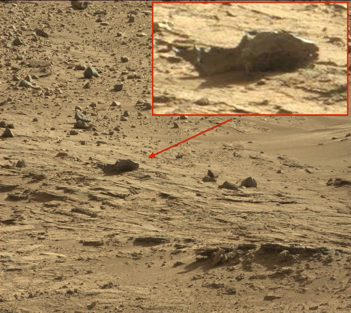 mars rover creature - photo #8