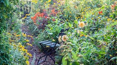 Atelier Ton ter Linden en verano 2015. Amarillo en el jardín