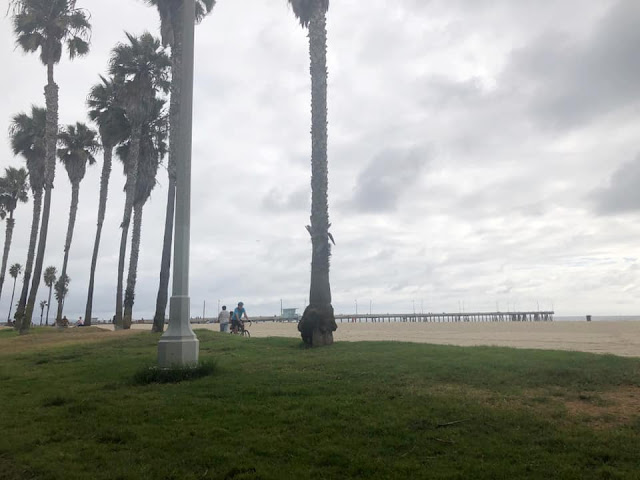 promenade sur Venice Beach Los Angeles