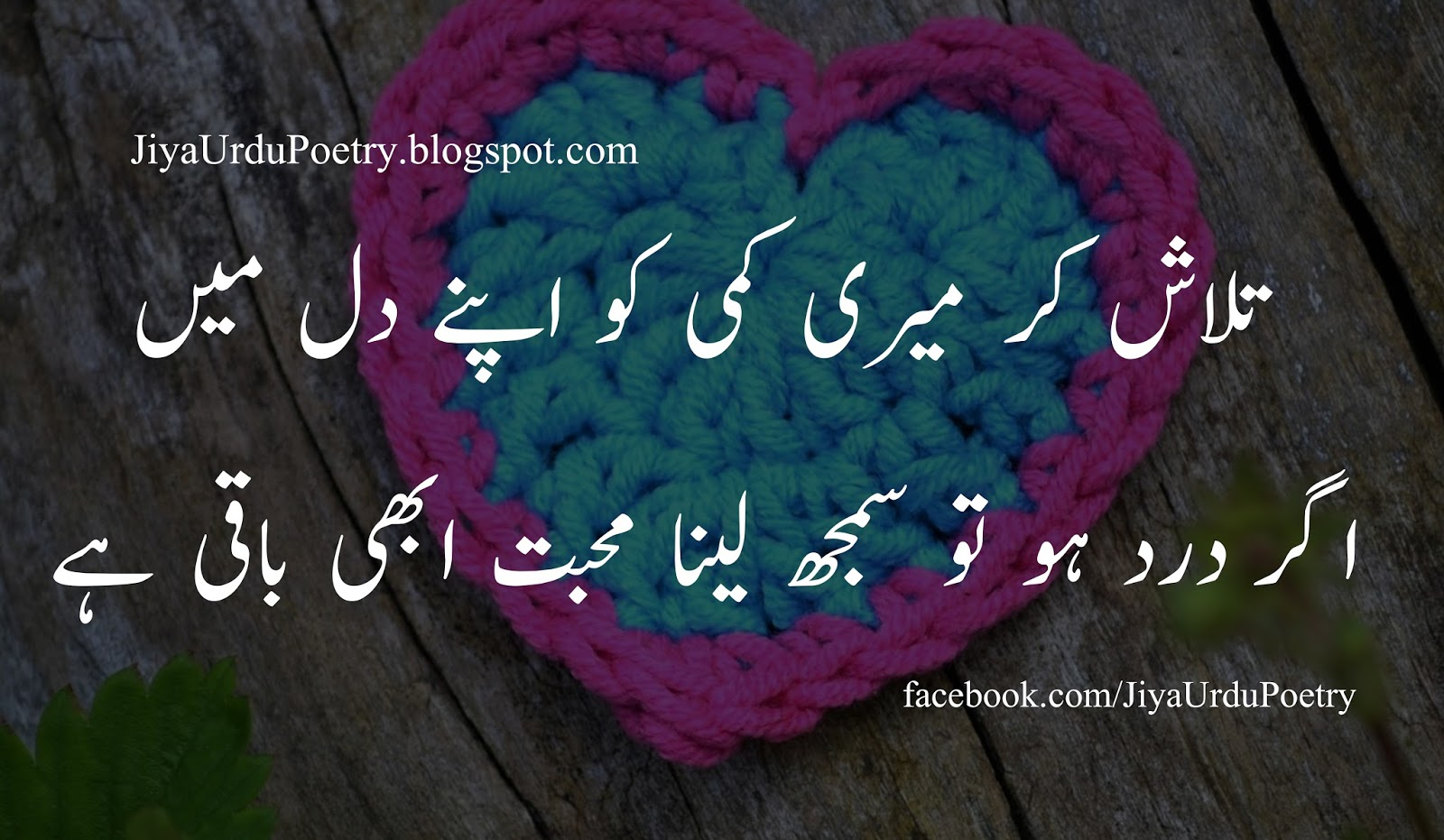 Best Poetry Pic