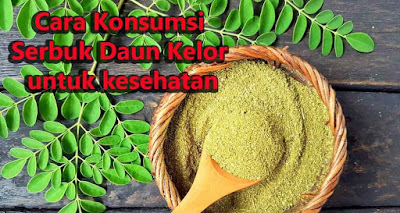 khasiat daun kelor untuk kolestrol