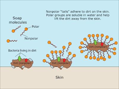 Why Hand Washing Prevents Wuhan Coronavirus