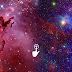Tenés una aceptación completa | Lugares celestiales  | Día 4