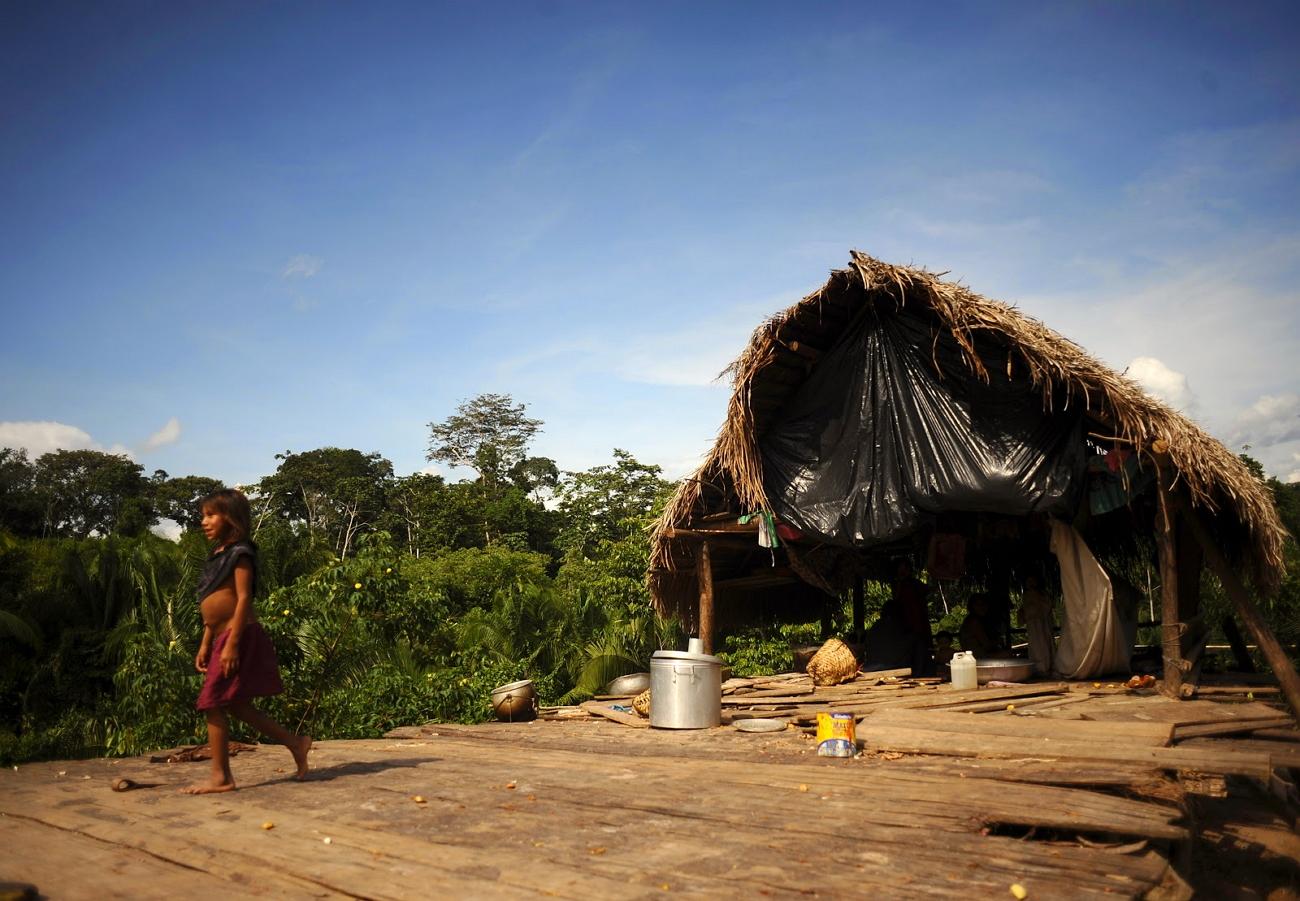 волжский фото домов людей живущих в дикой природе найдете фото номеров