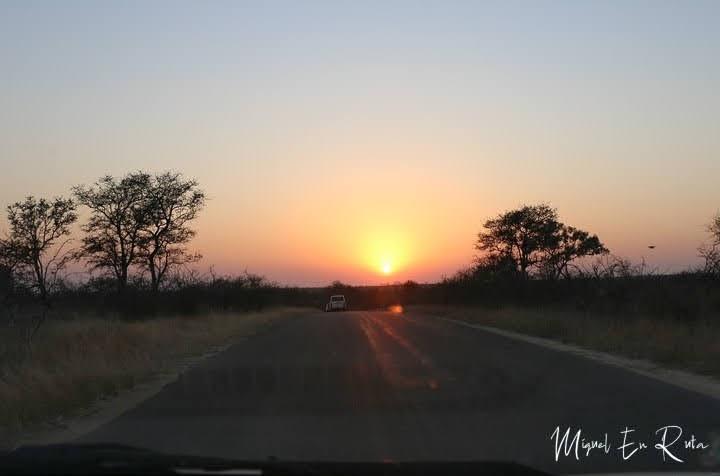 Amanecer en Shukuza, Kruger