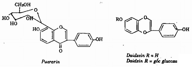 TP hóa học Sắn Dây - Pueraria thomsoni - Nguyên liệu làm thuốc Chữa Cảm Sốt