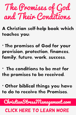 The Promises of God and their Conditions teaches you the things that God says He will give you and what you have to do to get them.