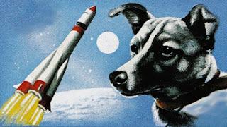 Perra Laika | Primer Ser Vivo Terrestre en Orbitar la Tierra