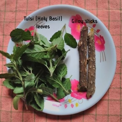 Tulsi leaves and Giloy sticks