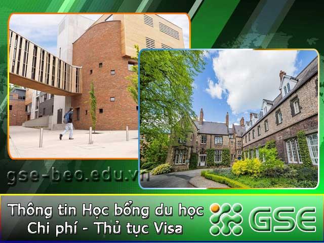 Tìm hiểu khóa học MBA tại Đại học York St John